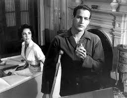 shut up i love that   fashionable film  cat on a hot tin roof   cat on a hot tin roof