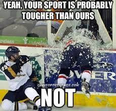 Hockey memes on Pinterest | Hockey, Meme and NHL via Relatably.com