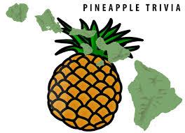 14 fun facts about <b>Hawaiian Pineapples</b> (origin, history, pizza ...