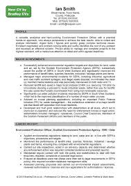 example profile for resumes template example profile for resumes