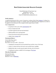 sample resume for real estate leasing agent cv builder and sample resume for real estate leasing agent real estate agent resume sample your professional resume real