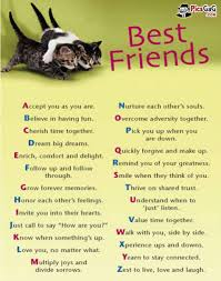 cute best friend quotes - AmusingFun.com | Pictures and Graphics ... via Relatably.com