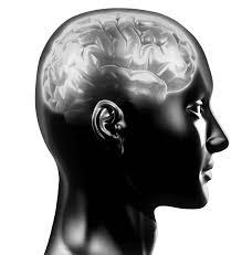 help me do my essay music and the brain dradgeeport web fc com help me do my essay music and the brain