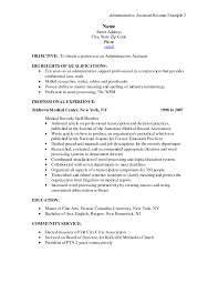 professional and chronological resume sample for administrative it
