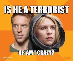 Comic-Con 2012: 'Homeland's' Hilarious Season 2 Memes (Exclusive ... via Relatably.com