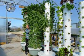 'Vertical Farming' Brings Futuristic Growing Methods To Middle ...
