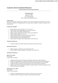 Example Resume  Technical Skills And Educational Summary For Resume Sample For Customer Service Position With
