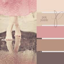 pink puddle color chart bathroom or bedroom colors very pretty brown room pinterest walls
