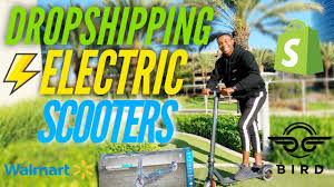How I'm <b>Dropshipping Electric</b> Scooters On Shopify - YouTube