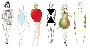 essay on the different classifications of body types