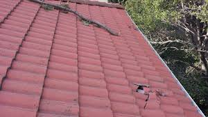 roof repair place: place a garden hose into the mouth of the pipe thought into whether the flat roof is actually the best decision for the building in question