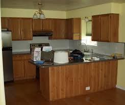 kitchen cabinets nicoleandjustinshouse thumbbd