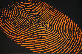 Image result for fingerprints + images