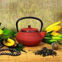 "«<b>Чугунный заварочный чайник</b> YOKUTA с ситом ""Кенжу"", <b>900</b> мл ..."
