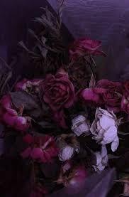 Pin by Tessa S. on Aesthetics | Dark purple flowers, Dark flowers ...