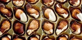 Image result for belgian chocolate