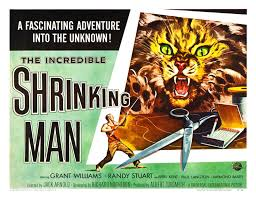 Image result for incredible shrinking man + images