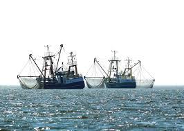 How much <b>fishing gear</b> is lost at <b>sea</b>? - CSIRO
