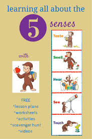 best images about senses scavenger hunts resources to teach kids about the 5 senses sensory issues