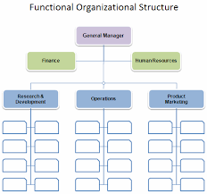 free organizational chart template   company organization chartfunctional business organizational chart