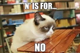 Grumpy Cat Wisdom on Pinterest | Angry Cat, Grumpy Cat and Grumpy ... via Relatably.com
