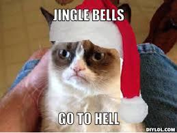 Memes Vault Angry Cat Memes Christmas via Relatably.com