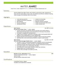 examples of resumes basic cv template forms 87 astonishing best resume template examples of resumes