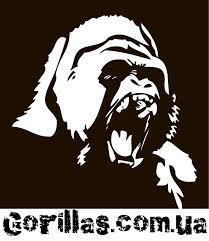 Gorillas.com.ua - магазин сильных вещей - Posty | Facebook