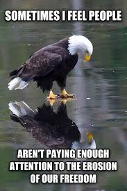 Self Reflection Eagle – (Meme) | WeKnowMemes via Relatably.com