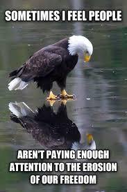 Self Reflection Eagle – (Meme) | WeKnowMemes via Relatably.com