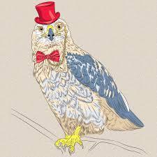 Premium Vector | <b>Hipster bird</b> rough-legged buzzard funny ostrich ...