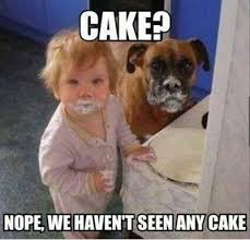 FunniestMemes.com - Funny Memes - [Cake? Nope, We Haven't Seen Any ... via Relatably.com