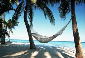 Image result for hammock on the beach