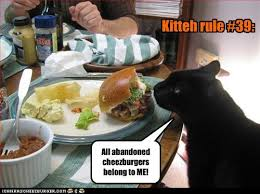 Kitteh rule #39: All abandoned cheezburgers belong to ME ... via Relatably.com