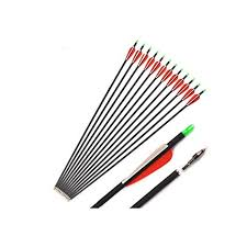 Amazon.com : 12/24/36 <b>Pcs</b> Spine 500 Mixed <b>Carbon Arrow</b> 30 ...