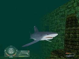 shark hunting the great white windows games s the videos