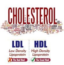 Картинки по запросу Cholesterol Levels and the Cardiovascular System