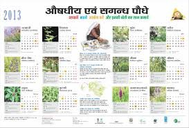 mainstreaming conservation and sustainable use of medicinal plants iec material