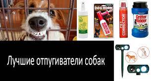 10 лучших отпугивателей <b>собак</b>: спреи, электронные и ...