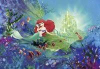 «<b>Фотообои</b> Komar <b>Disney</b> 4-463 Arielle» — Результаты поиска ...