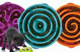 11 Best <b>Slow Feeder Dog Bowls</b> Reviewed In 2019