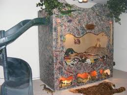 cool beds for kids in jungle theme with black slide and tiger fur rug awesome kids beds awesome