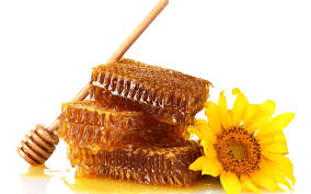 Honey is a risky food for infants
