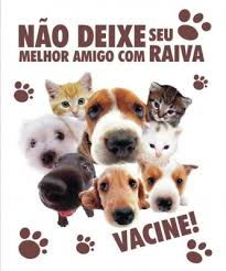 Vacinação antirrábica começa sábado na zona rural