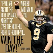 Famous Quotes By Drew Brees. QuotesGram via Relatably.com
