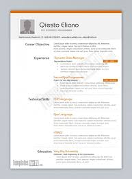 resume example programmer cv template employment education skills    resume example programmer cv template employment education skills graphic diagram work experience resume templates for pages resume template pages job