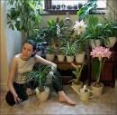 Фото домашних цветов в доме