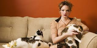 The '<b>crazy cat lady</b>' stereotype is a myth, according to research ...