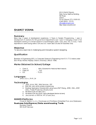 data warehouse resume template