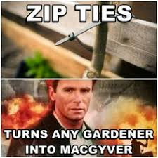 Gardening Quotes and Memes on Pinterest | Gardening Quotes, Seeds ... via Relatably.com
